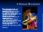 a human revolution4