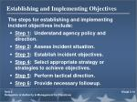 establishing and implementing objectives