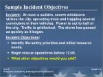 sample incident objectives