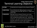 terminal learning objective39
