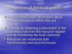 introspection of the local system