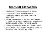 self unit extraction