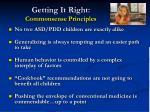 getting it right commonsense principles