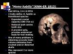 homo habilis knm er 1813