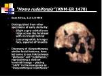 homo rudolfensis knm er 1470