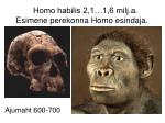 homo habilis 2 1 1 6 milj a esimene perekonna homo esindaja