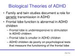 biological theories of adhd