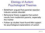 etiology of autism psychological theories