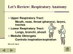 let s review respiratory anatomy