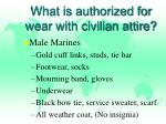 what is authorized for wear with civilian attire
