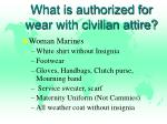what is authorized for wear with civilian attire1