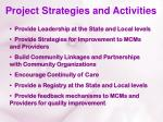 project strategies and activities