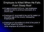 employee is killed when he falls from steep roof