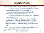 example 1 claim