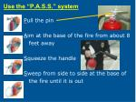 use the p a s s system