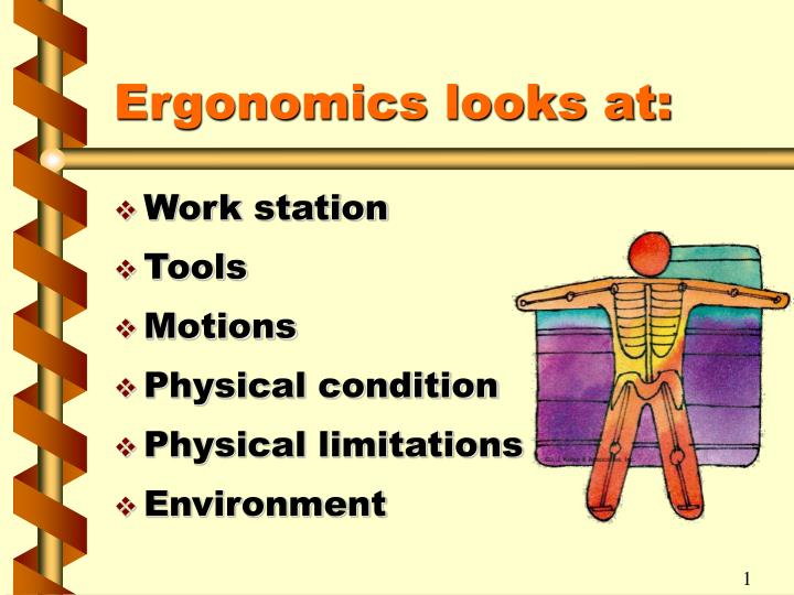 Ergonomics looks at