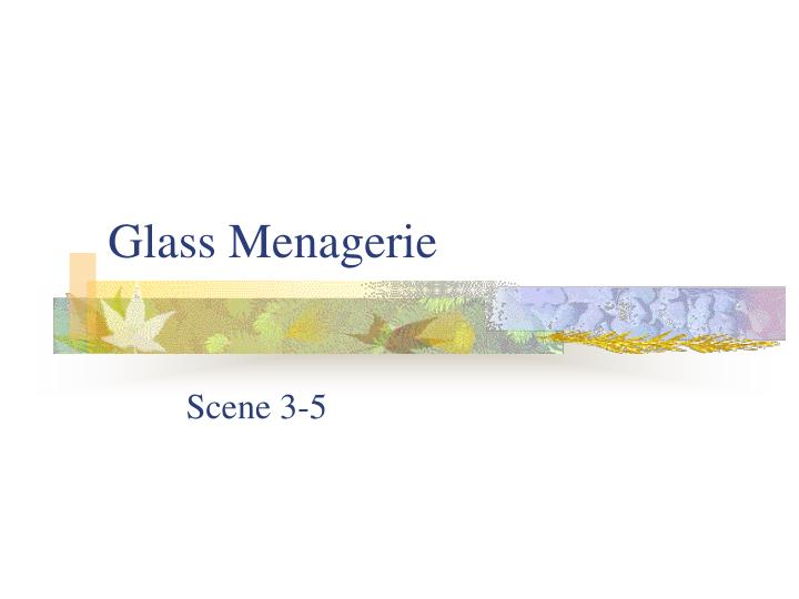 glass menagerie n.