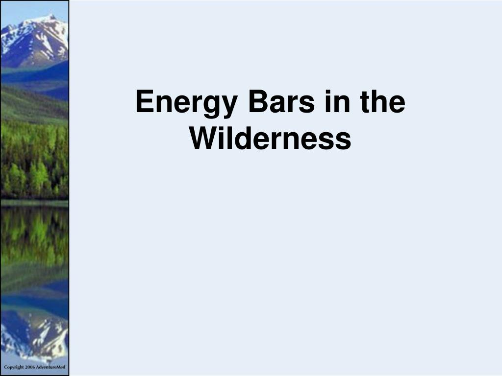 energy bars in the wilderness l.