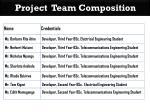 project team composition7