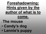 foreshadowning hints given by the author of what is to come