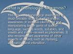 what is phonological awareness10