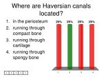 where are haversian canals located
