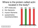 where is the protein called actin located in the body