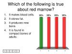 which of the following is true about red marrow