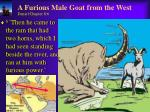 a furious male goat from the west daniel chapter 8 6