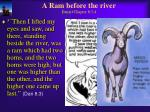 a ram before the river daniel chapter 8 3 4