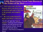 little horn grows great unto heaven the prince of the host daniel 8 10 11 12
