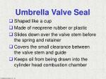 umbrella valve seal