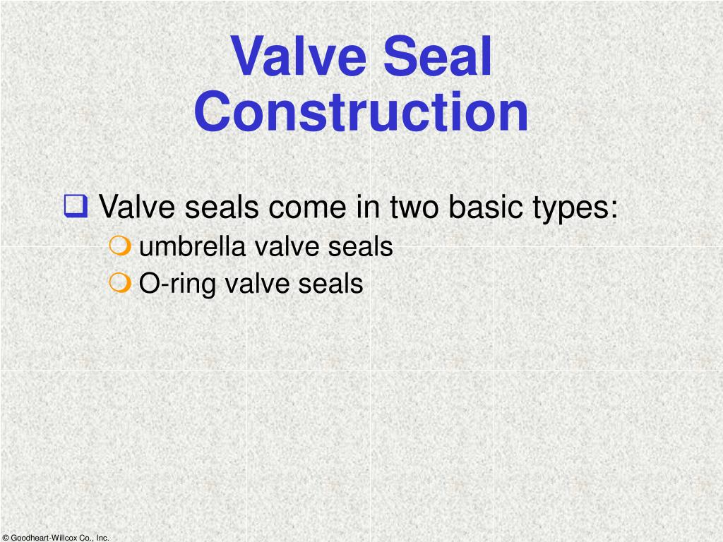 Valve Seal Construction