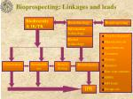 bioprospecting linkages and leads
