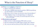 what is the function of sleep