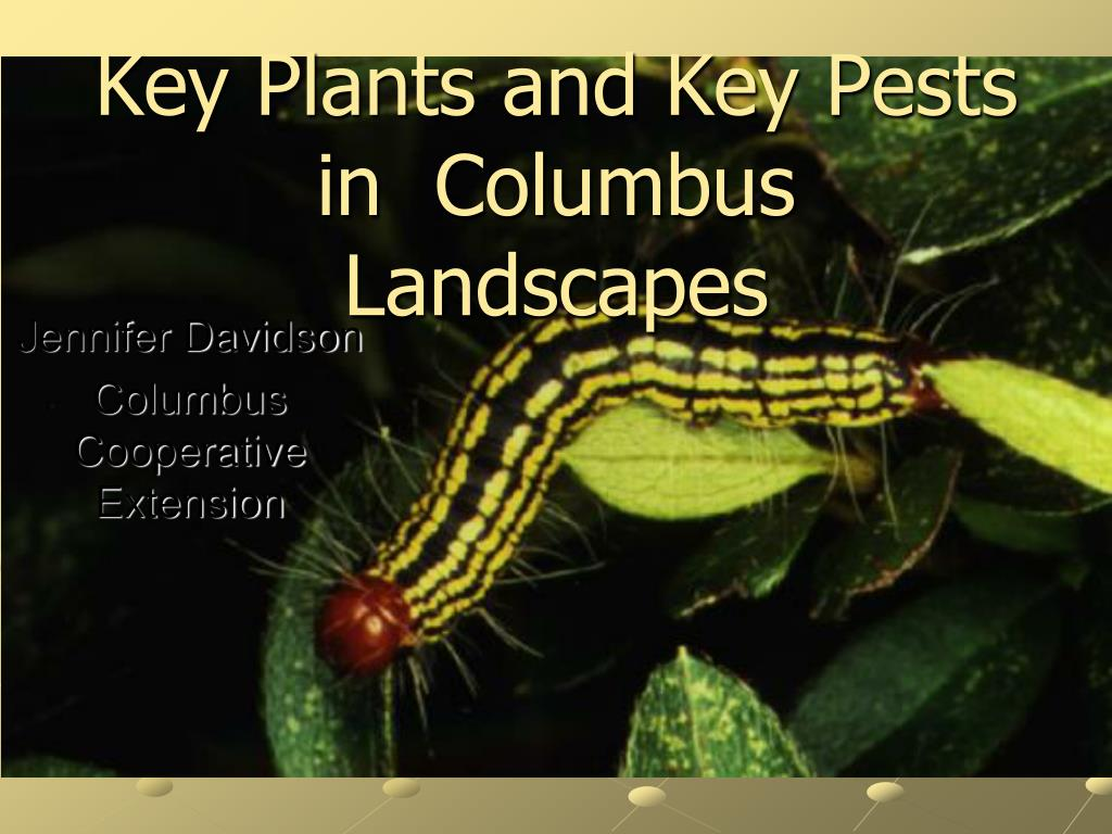 key plants and key pests in columbus landscapes l.