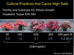 cultural practices that cause high salts19