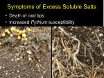 symptoms of excess soluble salts14