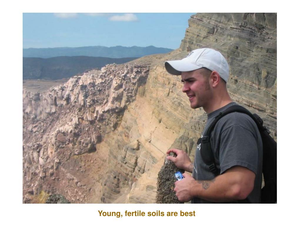 Young, fertile soils are best