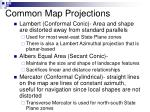 common map projections