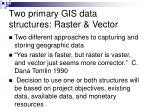 two primary gis data structures raster vector