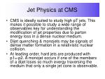 jet physics at cms