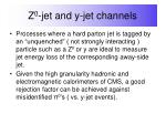z 0 jet and y jet channels