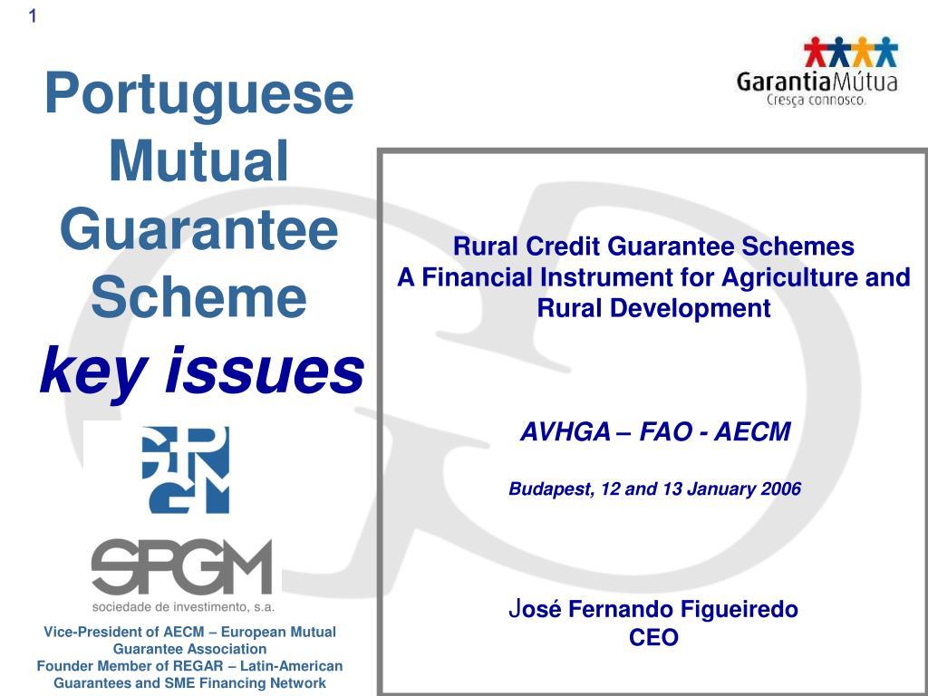portuguese mutual guarantee scheme key issues l.
