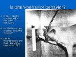 is brain behavior behavior