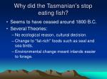 why did the tasmanian s stop eating fish