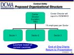 proposed organizational structure20