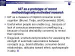 iat as a prototype of recent methodologically motivated research