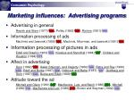 marketing influences advertising programs