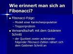 wie erinnert man sich an fibonacci